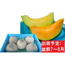 【ふるさと納税】8月盆前 津軽のメロン約8kg(赤肉・青肉セ...