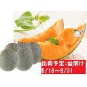 【ふるさと納税】8月盆明け 津軽の赤肉メロン約8kg・4〜6...