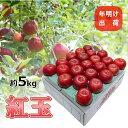 【ふるさと納税】4~5月 りんご 5kg 青森産 紅玉 スマートフレッシュ貯蔵 【果物類・林檎・りんご・リンゴ・紅玉】 お届け:2021年4月1日~2021年5月31日
