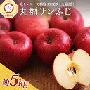 【ふるさと納税】※選べる 配送時期※ りんご 青森 5kg 丸福 サンふじ 光センサー 選果 糖度