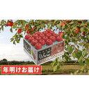 【ふるさと納税】年明け 最高級 糖度保証サンふじ約10kg特...