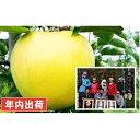 【ふるさと納税】年内 親子三代最高位のシナノゴールド約6kg家庭用 【果物類・林檎・りんご・リンゴ】 お届け:2019年12月15日〜2019年12月30日