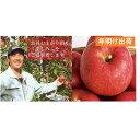 【ふるさと納税】年明け 贈答用サンふじ約3kg(糖度証明書付き) 【果物類・林檎・りんご・リンゴ・青森県産】 お届け:2020年1月10日〜2020年2月29日