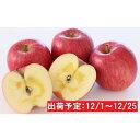 【ふるさと納税】年内 蜜入り糖度14度以上サンふじ約3kg ...