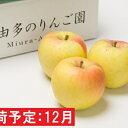 【ふるさと納税】年内 贈答用 ぐんま名月 約3kg(糖度証明書付き) 【那由多のりんご園・平川市産・