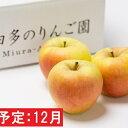 【ふるさと納税】年内 【訳あり】ぐんま名月 約5kg(糖度証明書付き) 【那由多のりんご園・平川市産