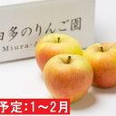 【ふるさと納税】年明け 【訳あり】ぐんま名月約5kg(糖度証明書付き) 【果物類・林檎・りんご・リン