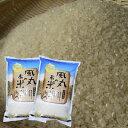 【ふるさと納税】令和元年産米 つがるロマン5kg×2袋 風丸農場のお米 【お米】