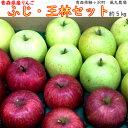 【ふるさと納税】白神のふもと『風丸農場』青森の新鮮りんご(ふ...