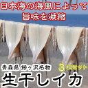 【ふるさと納税】青森県鰺ヶ沢町 生干しイカ 3枚セット ※お...