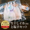 【ふるさと納税】青森県鰺ヶ沢町 生干しイカ(3枚組)と塩辛セ...
