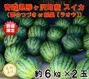 【ふるさと納税】産地直送!青森県鰺ヶ沢町産 スイカ(6kg×...