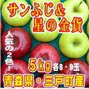 【ふるさと納税】りんご「サンふじ」&「星の金貨」計16〜18...