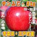 【ふるさと納税】りんご「サンふじ」18〜20玉 約5kg【1