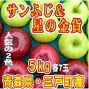 【ふるさと納税】りんご「サンふじ」&「星の金貨」計14玉 約
