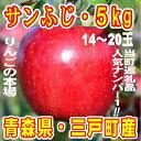 【ふるさと納税】りんご「サンふじ」14〜20玉 約5kg★★...