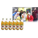 【ふるさと納税】田子の無添加りんごジュース1L×6本 山市幸男さん生産直送 【果物類・林檎・リンゴ・飲料類・果汁飲料・りんご・ジュース】