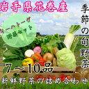【ふるさと納税】いわて花巻産イーハトーヴ野菜セット...