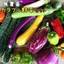 【ふるさと納税】無農薬 カラフル野菜セット ひばり農園《9月...