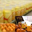 【ふるさと納税】花巻の自然卵(和み農園産)使用「なめらか自然...