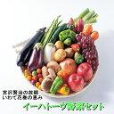 【ふるさと納税】いわて花巻産イーハトーヴ野菜セット 旬野菜 果物 詰合せ