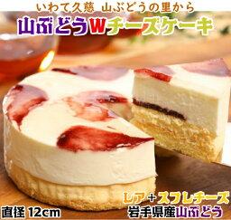【<strong>ふるさと納税</strong>】【いわて・久慈 山ぶどうの里から】山ぶどうW<strong>チーズ</strong>ケーキ(直径12cm)