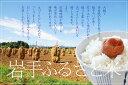 【ふるさと納税】☆全3回定期便☆ 5kg×3カ月 岩手県奥州市産ひとめぼれ(令和元年産) 岩手ふるさと米 頒布会[U061]