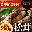 【ふるさと納税】岩手県産天然松茸 約250g