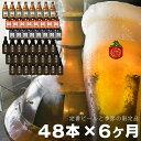 【ふるさと納税】毎月48本 6ヵ月お届け 岩手の地ビール ベアレン醸造所 定番 季節限定 詰め合わせ 330ml 瓶 頒布会 定期便