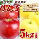 【ふるさと納税】岩手県産りんご2種の詰め合わせ『シナノゴール...