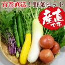 【ふるさと納税】限定数販売!石巻直送お野菜セット