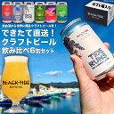 【ふるさと納税】【できたて直送!】クラフトビール6缶セット<