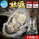 【ふるさと納税】<予約>奥松島産極上旨牡蠣たっぷり詰合せ(むき身1.5kg・殻付き40個)<2021年11月~順次発送> 宮城県 生かき 剥きがき 殻付きカキ