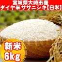 【ふるさと納税】《白米6Kg》ダイヤ米宮城県大崎市産ササニシ...