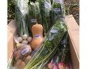 【ふるさと納税】No.057 季節のオーガニック野菜とポップ...