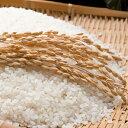 【ふるさと納税】郷の有機使用特別栽培米ひとめぼれ 7kg 【...
