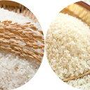 【ふるさと納税】郷の有機使用特別栽培米 ひとめぼれ 7kg ...