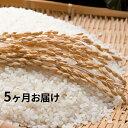 【ふるさと納税】【5ヶ月連続お届け】郷の有機使用特別栽培米ひ...
