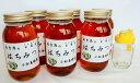 【ふるさと納税】E12215秋田の玄圃梨蜂蜜1kg×6本+ピ...