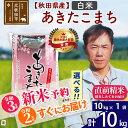 【ふるさと納税】【新米予約・即納選べる】 【白米】 秋田県産 あきたこまち10kg(10kg×1袋)
