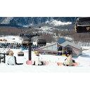 【ふるさと納税】【たざわ湖スキー場】リフト1日券(大人)1名...