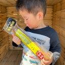 無洗米 秋田県産 あきたこまち 20kg 5kg×4 令和2年産 送料無料 お米 白米