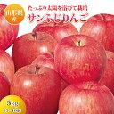 【ふるさと納税】山形県産 サンふじりんご F2Y-0237