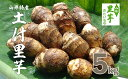【ふるさと納税】FY18-096 山形特産 土付里芋5kg