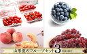 【ふるさと納税】FS20-007 【令和3年産先行予約】[定期便3回] 山形夏のフルーツセット