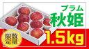 【ふるさと納税】FY18-816【先行予約】♪生産量日本一♪山形プラム(秋姫)1.5kg