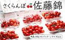 【ふるさと納税】FY18-827 さくらんぼ(佐藤錦)1.2...