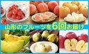 【ふるさと納税】FY19-004 【定期便6回】【山形のフル...