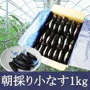 【ふるさと納税】FY19-138 やまがたの朝採り漬物用小な...