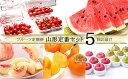 【ふるさと納税】FY18-845【令和2年産先行予約】定期便...